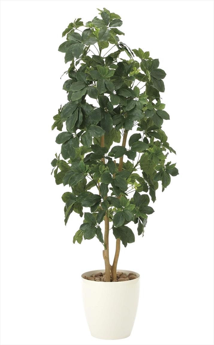 光触媒 人工観葉植物光の楽園 シェフレラ1.6mインテリア フェイクグリーン