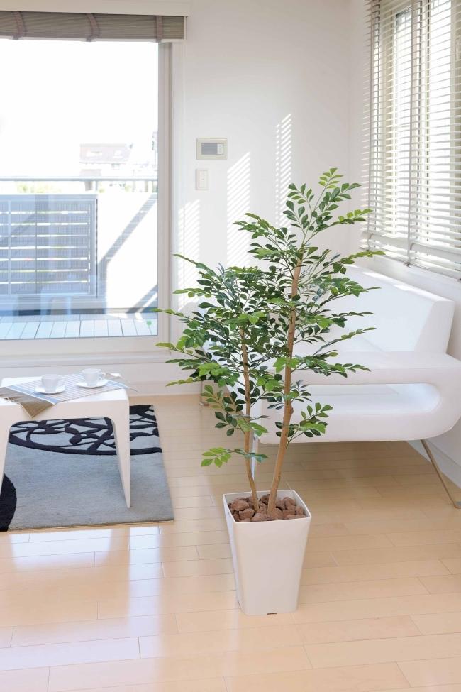 光触媒 光の楽園 トネリコ 1.2m【インテリアグリーン 人工観葉植物】