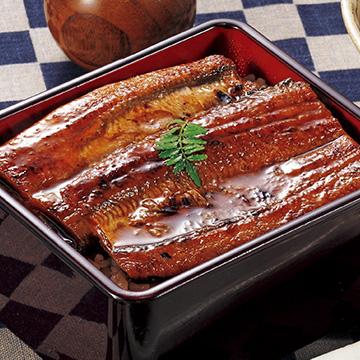鹿児島県産 うなぎ蒲焼 60g(タレ込み)×5袋
