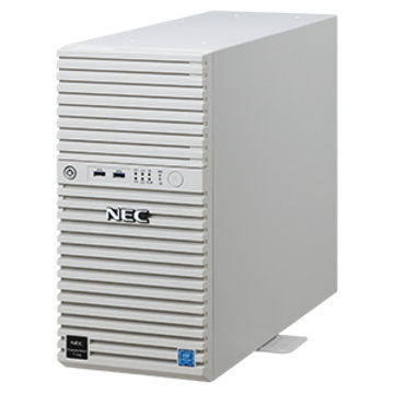 NEC T110j(2nd) Xeon/8G/2TB*2/RAID1/W16 NP8100-2814YPBY