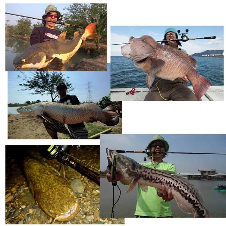 虻伽西亚世界巨兽WMCC-654M MGS AbuGarcia World Monster WMonster WMCC-654M MGS 1400569钓具钓鱼减弱鱼竿巨兽竿子推荐的邮购海外怪鱼远征pirarukubaramandi