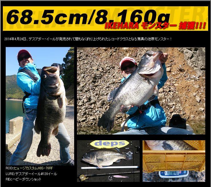 深度死亡 Adair 8.5 英寸 deps Deathadder 鳗鱼 8.5 英寸捕鱼 noike 跳汰机跳汰机捕鱼蠕虫软诱使低音小老鼠大嘴 (大型客车)