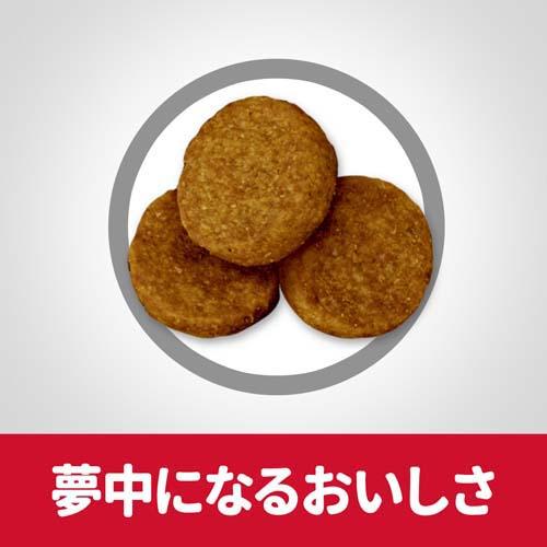 G カップ シスターズ 送料無料キャンペーン?】 高齢犬用(12kg)【サイエンスダイエット