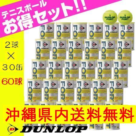 【沖縄県内(離島含)3,240円以上購入で送料無料】【箱売り】ダンロップ(DUNLOP) 硬式テニスボール2球×30缶セット フォート DFDYL2DOZ