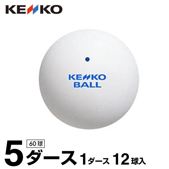 ケンコー KENKO ソフトテニスボール スタンダード・ホワイト 練習球 12球 TSSW-V 【5ダース】