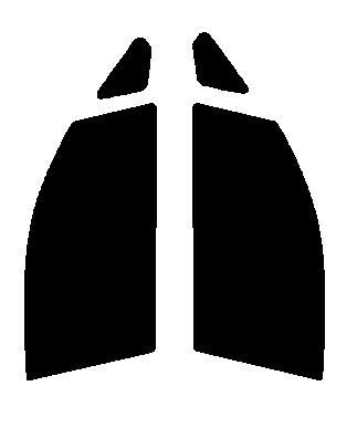 ●GHOST(ゴースト) オーロラ80 運転席・助手席  ムーヴ ムーブ LA100S・LA110Sカット済みカーフィルム ハードコート 代引き注文不可