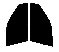 <title>リンテック製の透明感を追求した原料着色タイプの高品質フィルムです 従来のフィルムよりさらに透明性アップさせ 室内側からの視認性も向上 送料無料 高透明 断熱フィルム 運転席 助手席 サニー セダン SNB14 SB14 HB14 FNB14 FB14 EB14 B14 カット済みカーフィルム 新色</title>
