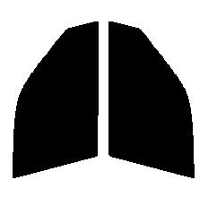 ●GHOST(ゴースト) オーロラ80 運転席・助手席 ホンダ シビックシャトル EF1・EF2・EF3・EF5 5ドアカット済みカーフィルム ハードコート 代引き注文不可