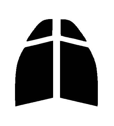●GHOST(ゴースト) オーロラ80 運転席・助手席 ホンダ ライフ JC1 JC2カット済みカーフィルム ハードコート 代引き注文不可