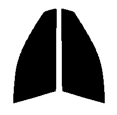 ●GHOST(ゴースト) オーロラ80 運転席・助手席 ニッサン ウイングロード WPY11・WHY11・WHNY11・WFY11・WRY11カット済みカーフィルム ハードコート 代引き注文不可