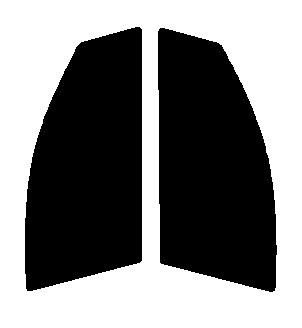 ●GHOST(ゴースト) オーロラ80 運転席・助手席 ニッサン デュアリス J10・KJ10・KNJ10 カット済みカーフィルム ハードコート 代引き注文不可
