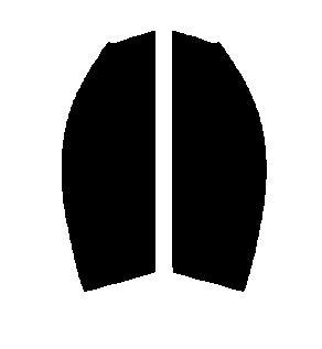 ●GHOST(ゴースト) オーロラ80 運転席・助手席 ニッサン フェアレディZ Z33カット済みカーフィルム ハードコート 代引き注文不可