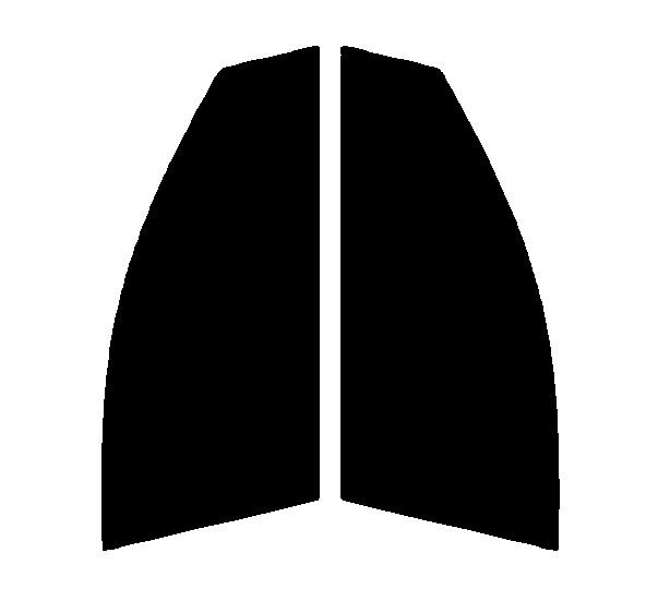 ●GHOST(ゴースト) オーロラ80 運転席・助手席 プレミオ ZNT260・ZRT260・ZRT261・ZRT265 カット済みカーフィルム ハードコート 代引き注文不可