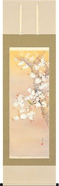 桜の掛け軸/桜に小禽 床の間に春を飾る 桜の掛け軸/高級桐箱付