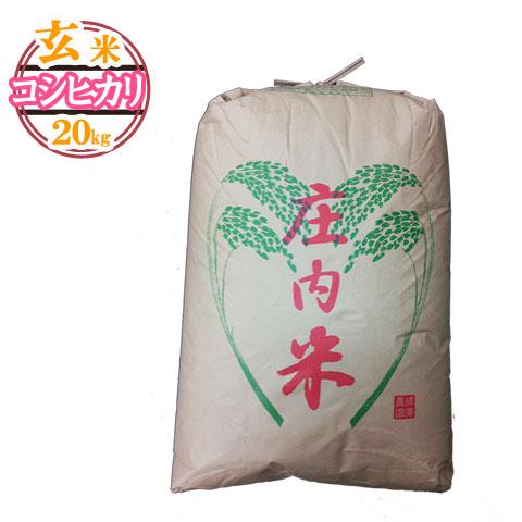 (随時発送)(送料無料)山形県産 コシヒカリ 玄米 20キロ★どぉ~んと大特価!げんまい 20kg お米(おこめ)【安全で確かなものを食卓へ】