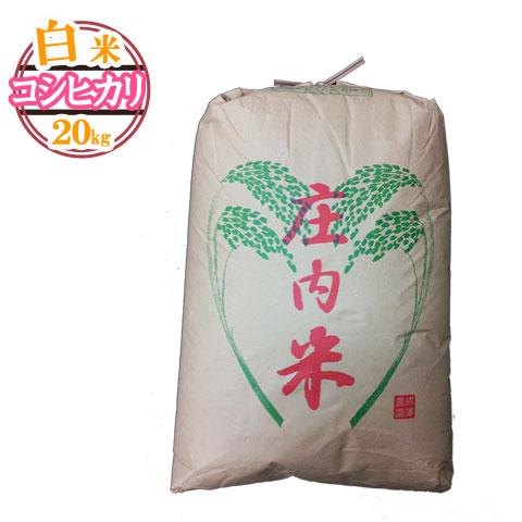 (随時発送)(送料無料)山形県産 コシヒカリ 白米 20キロ★どぉ~んと大特価!はくまい 20kg お米(おこめ)【安全で確かなものを食卓へ】