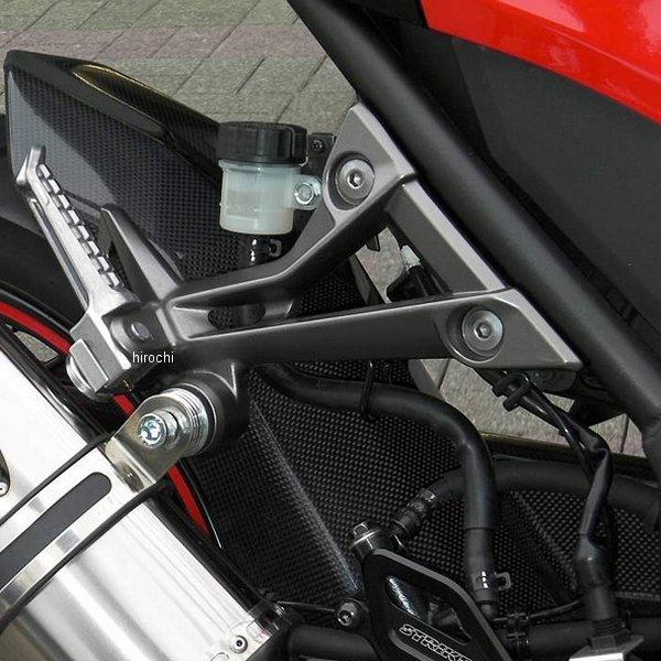 ストライカー STRIKER リアフェンダー ノーマルスイングアーム用 13年以降 ニンジャ250、ニンジャ250ABS カーボン SAD-RF117C-A HD店