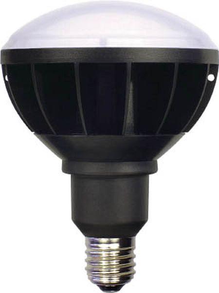 【メーカー在庫あり】 日動工業(株) 日動 LED交換球 ハイスペックエコビック50W E39 本体黒 ワイド L50W-E39-WBK-50K-N HD