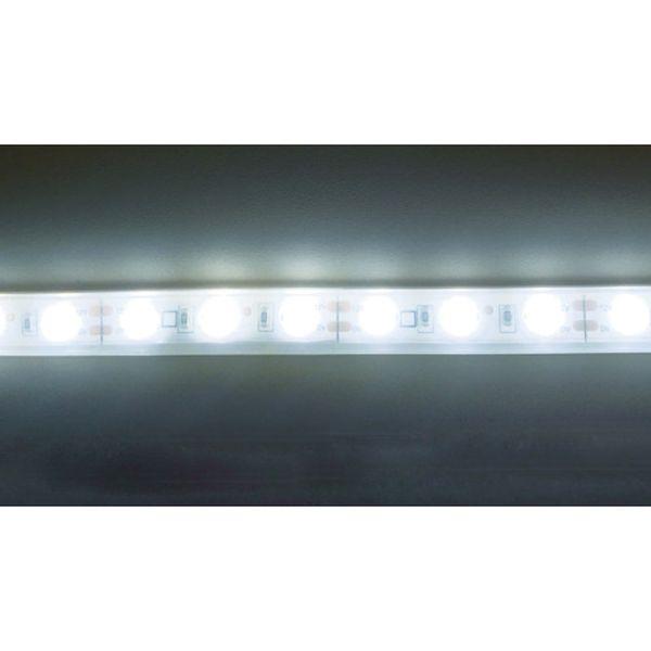 【メーカー在庫あり】 トライト(株) トライト LEDテープライト 33mmP  5000K 3M巻 TP503-33PN HD