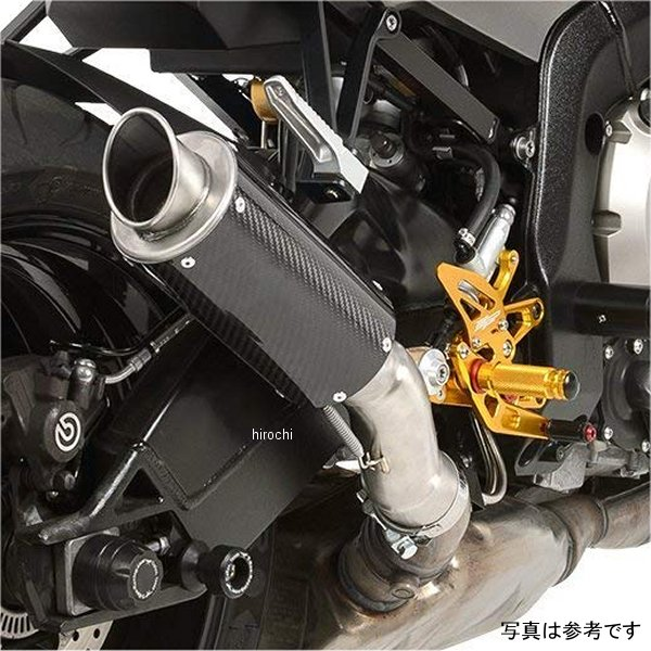 【USA在庫あり】 ホットボディーズ Hotbodies Racing SLIPON CARBON MGP2 BMW 1811-3160 JP