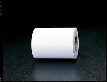 【メーカー在庫あり】 エスコ ESCO 300x0.10mm/10m フッ素樹脂フィルム 000012060087 JP店