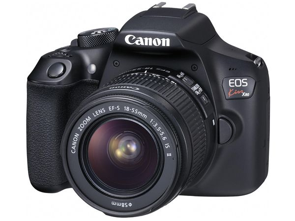 EA759GA-172B エスコ ESCO [1800万画素] 一眼レフデジタルカメラ(レンズキット)