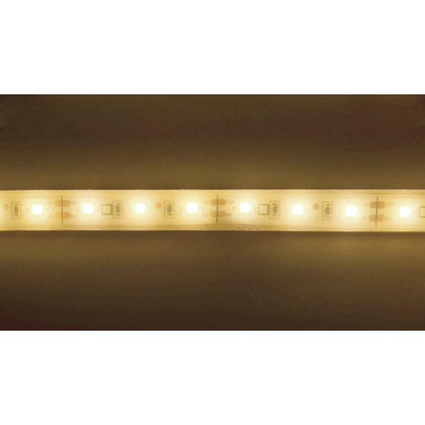【メーカー在庫あり】 TP27316.6PN トライト(株) トライト LEDテープライト 16.6mmP 2700K 3M巻 TP273-16-6PN JP