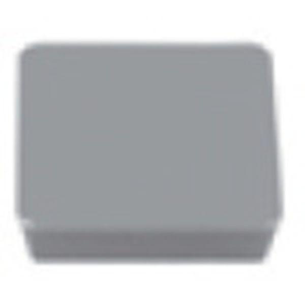 【メーカー在庫あり】 (株)タンガロイ タンガロイ 転削用C.E級TACチップ 超硬 10個入り WPAN42SFR JP
