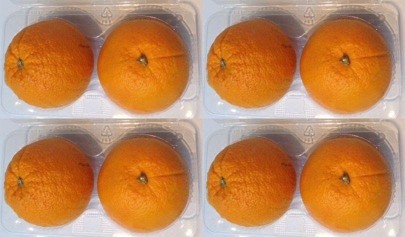 香りが良く ギフト とってもジューシー メーカー直売 アメリカ カルフォニア産オレンジ8玉