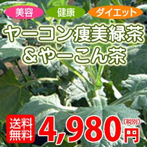 SlimViewTea yacon achene beauty green tea & or-dented tea 10P04Aug13