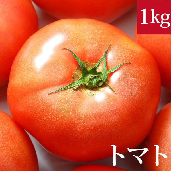 アウトレット トマト1kg ※アウトレット品 無農薬 国産 無化学肥料