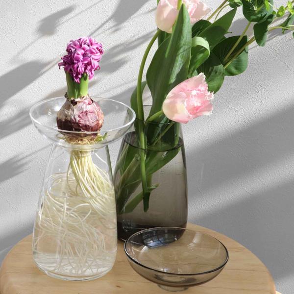 花束も球根も 透明感のあるガラス花瓶で草花の成長を愉しむ 花瓶 ガラス キントー KINTO アクアカルチャーベース AQUA CULTURE VASE Lサイズ フラワーベース 水耕栽培