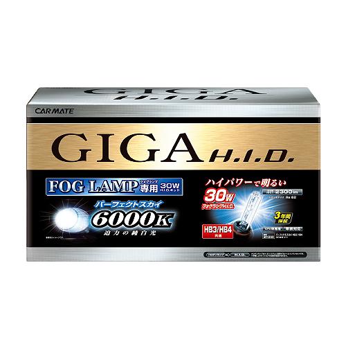 送料無料! GIGA HIDコンバージョンキット パーフェクトスカイ 6000K HB3/HB4【GFK660】