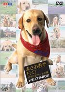 【送料無料】 まさお君が行く!ポチたまペットの旅 メモリアルBOX 【DVD】