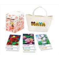 【送料無料】 みつばちマーヤの冒険 コンプリートDVD-BOX 【DVD】