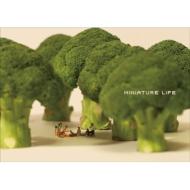 送料無料 MINIATURE LIFE 本 CALENDAR ミニチュアライフ 定番から日本未入荷 高い素材