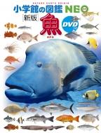 新版 魚 DVDつき 小学館の図鑑NEO アウトレット☆送料無料 図鑑 セール商品 井田齋