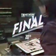 【送料無料】 TM NETWORK ティーエムネットワーク / TM NETWORK 30th FINAL (Blu-ray 2枚組)【初回生産限定 豪華盤】 【BLU-RAY DISC】