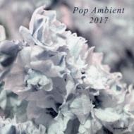 新入荷 流行 Pop Ambient 2017 予約販売品 輸入盤 CD