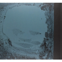 【送料無料】 Radiohead レディオヘッド / Moon Shaped Pool デラックス・エディション (2枚組CD付 / 2枚組アナログレコード)  【LP】