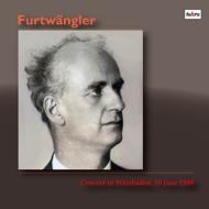 【送料無料】 ブラームス: 交響曲第4番、モーツァルト: 交響曲第40番、プフィッツナー ヴィルヘルム・フルトヴェングラー & ベルリン・フィル(ヴィースバーデン1949)(2LP) 【LP】
