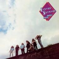 【送料無料】 Lynyrd Skynyrd レイナードスキナード / Nuthin' Fancy (高音質盤 / 45回転盤 / 2枚組 / 200グラム重量盤レコード / Analogue Productions) 【LP】