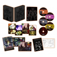 【送料無料】 牙狼<GARO>-VANISHING LINE- Blu-ray BOX 2 【BLU-RAY DISC】