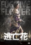 【送料無料】 逃亡花 DVD-BOX 【DVD】