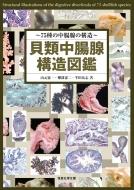 【送料無料】 貝類中腸腺構造図鑑 75種の中腸腺の構造 / 山元憲一 【図鑑】