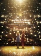【送料無料】 キャロル & チューズデイ DVD Box Vol.2 【DVD】