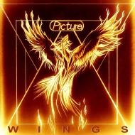 【送料無料】 Picture / Wings 【LP】