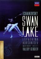 ※アウトレット品 バレエ ダンス 白鳥の湖 ウリヤーナ ロパートキナ 2006 特価 コルスンツェフ ダニーラ マリインスキー DVD