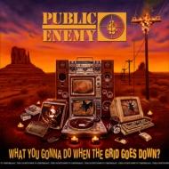 【送料無料】 Public Enemy パブリックエナミー / What You Gonna Do When The Grid Goes Down? 【CD】