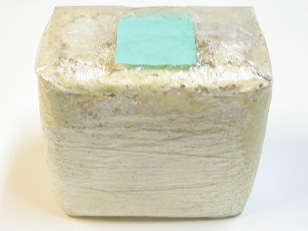 拘りのボトル作り カワラ菌糸ブロック 奉呈 4000 菌糸ビン 送料無料でお届けします 作り